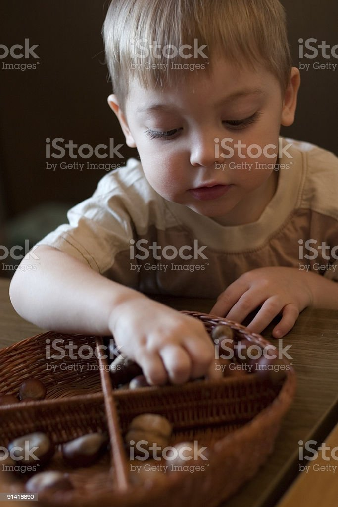 learning boy royalty-free stock photo