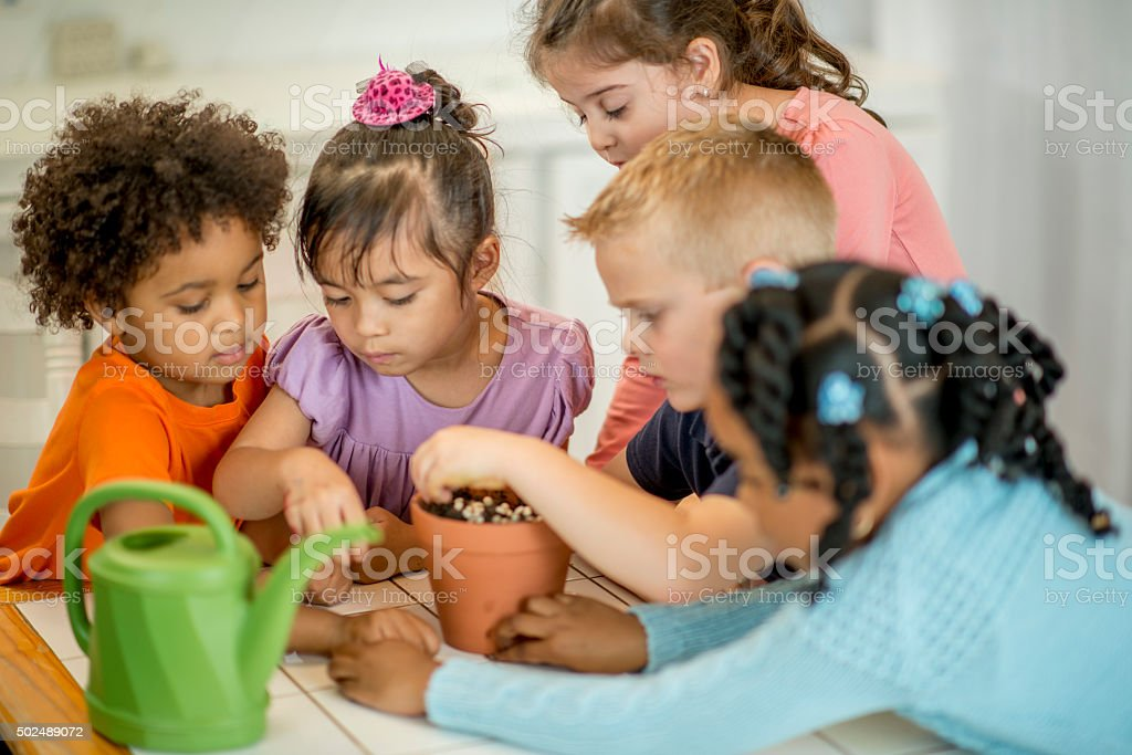Learning How to Plant Seeds in Class stock photo