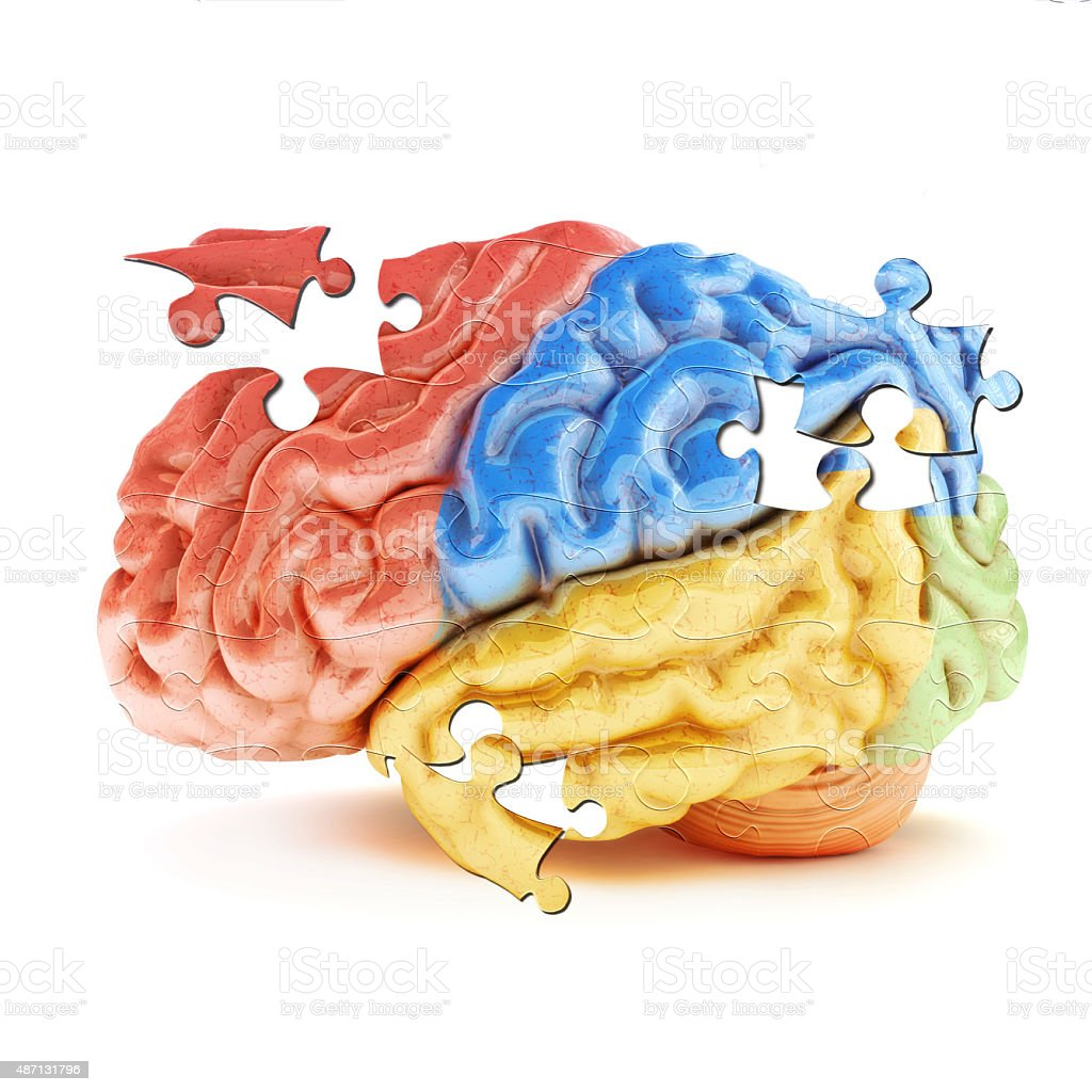 Learning the Brain stock photo
