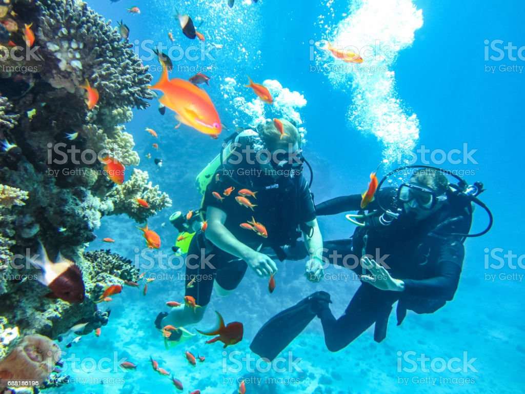 Learning to dive under water diving. Entertainment at tourist resort in Egypt stock photo