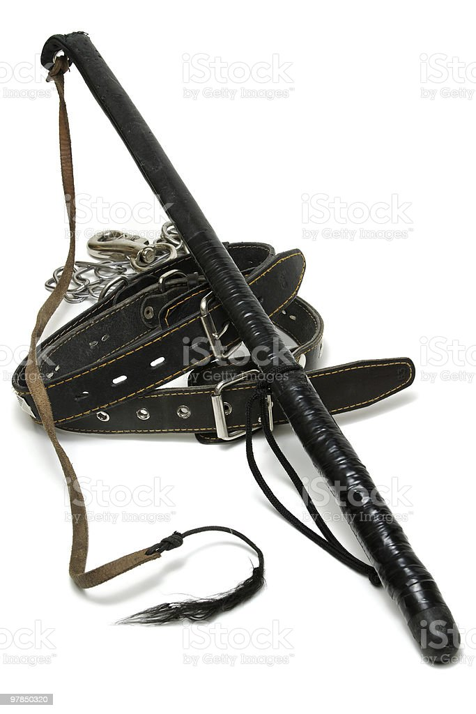Leather collars and whip stock photo