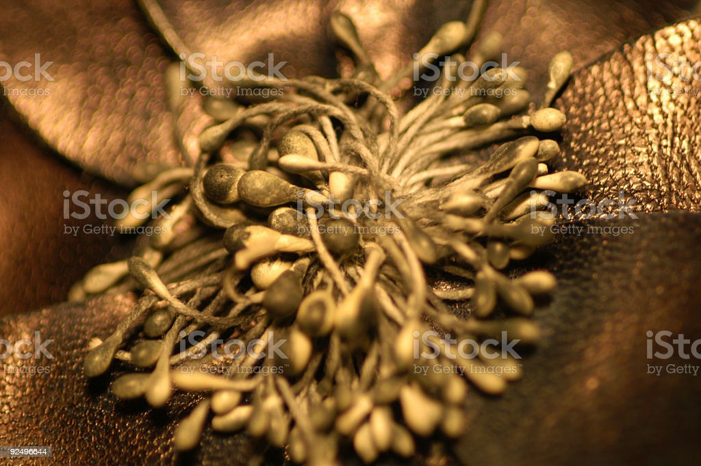 Leather Flower royalty-free stock photo
