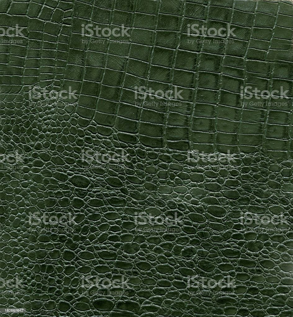 Leather green stock photo