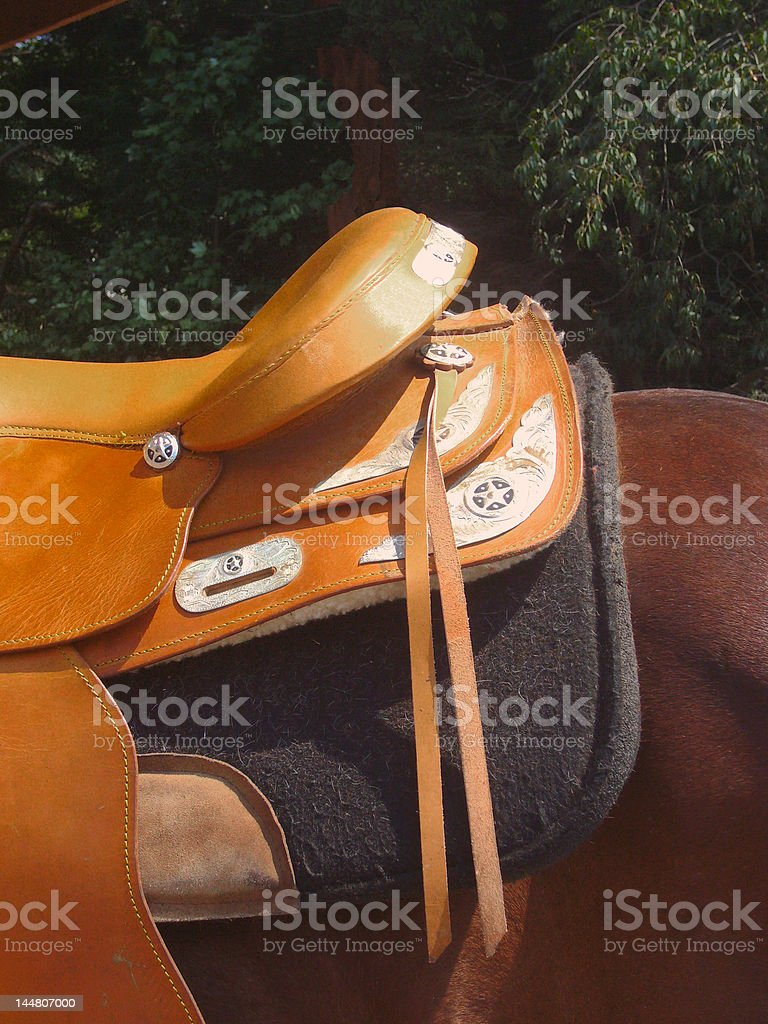 leather saddle detail royalty-free stock photo