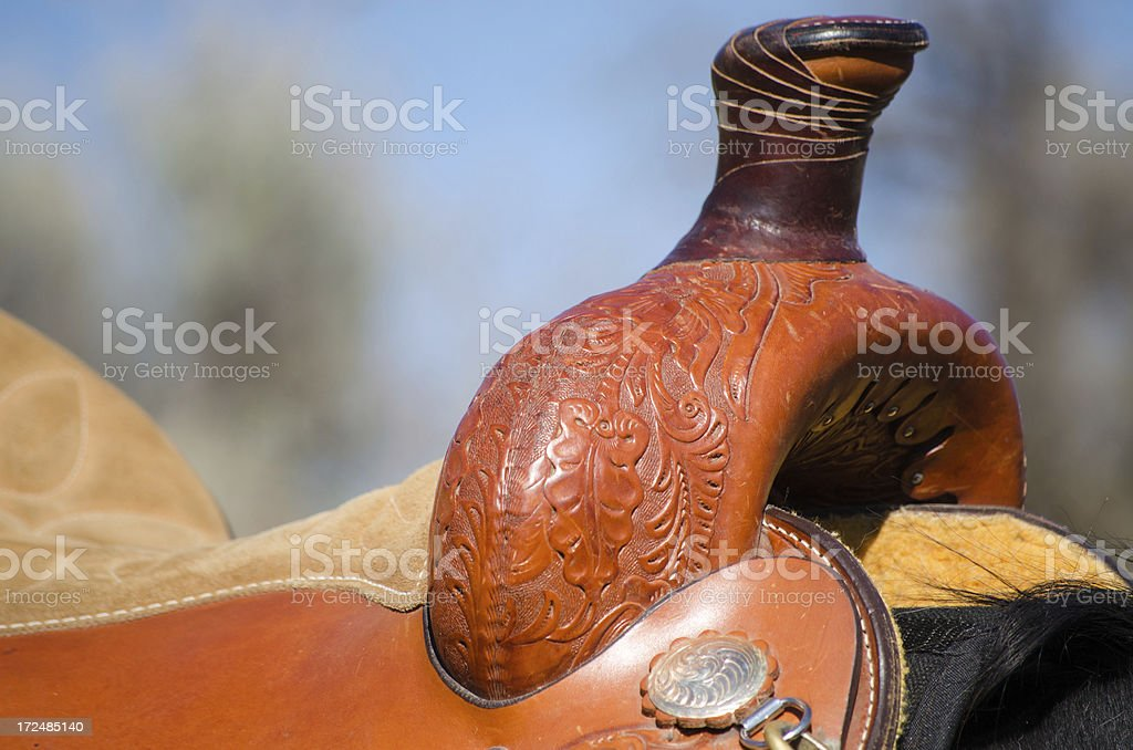 Leather Saddle royalty-free stock photo