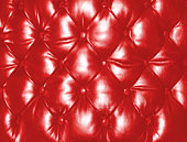 Leather Seat Cushion - Red