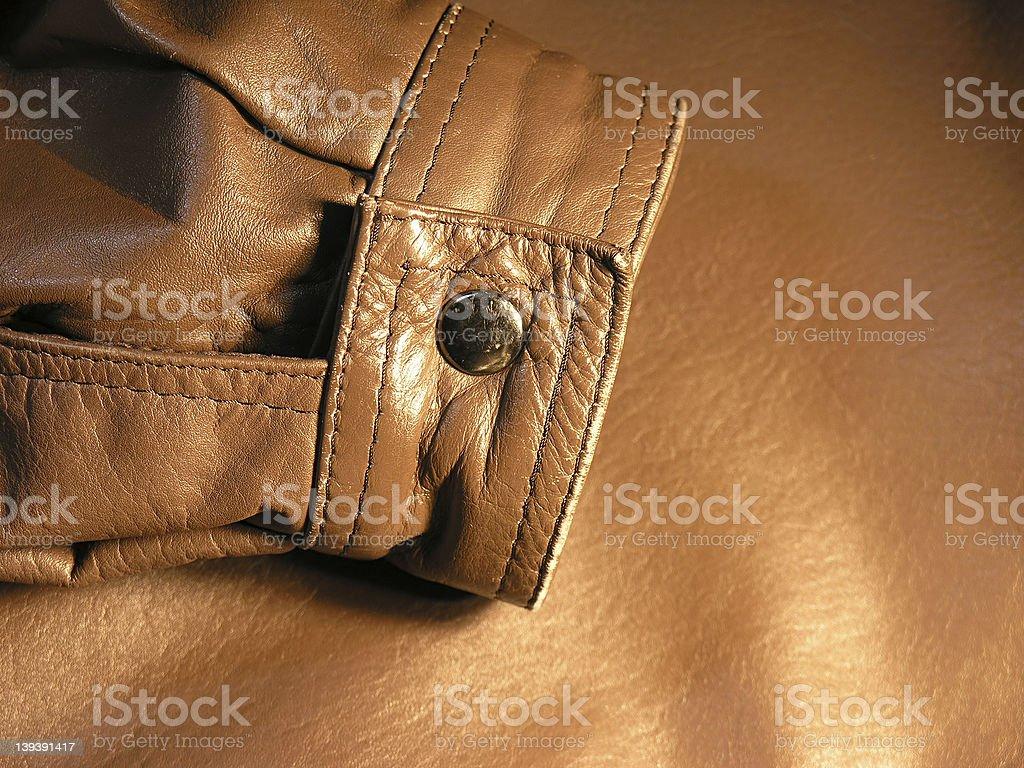 Leather Sleeve royalty-free stock photo