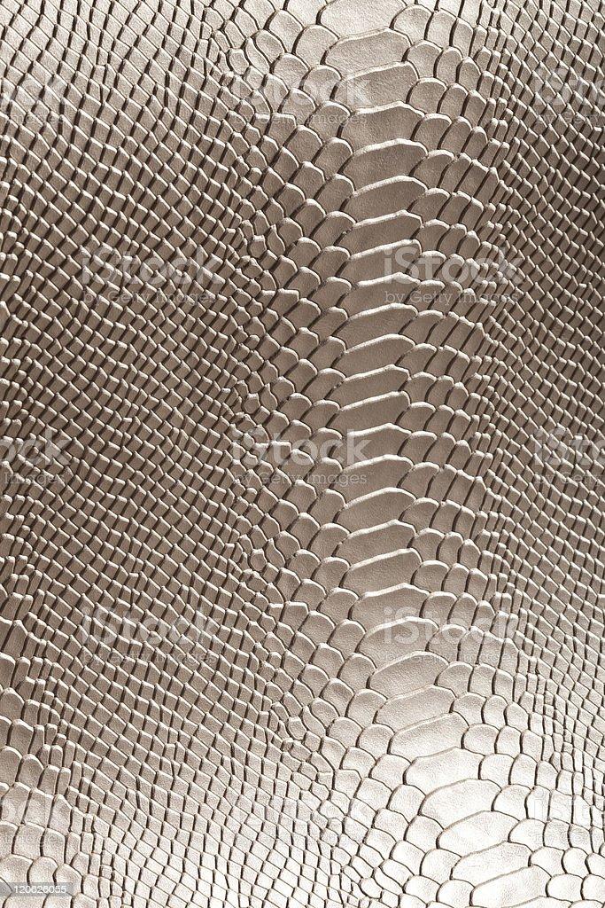 Leather snake like textured background stock photo