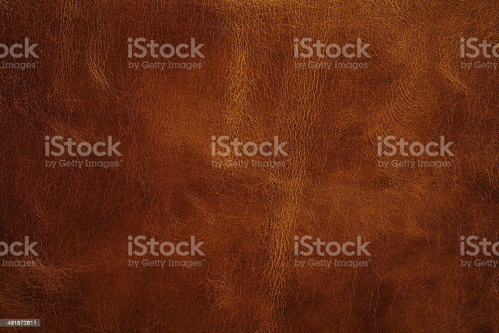 leather texture closeup stock photo