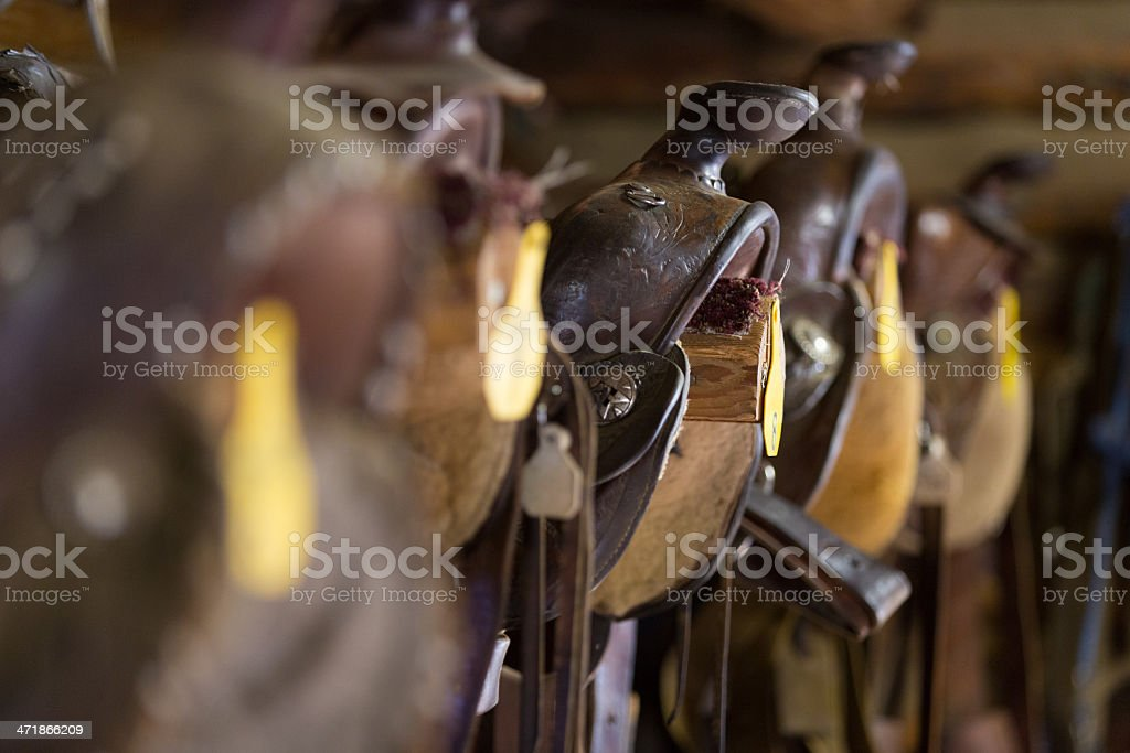 Leather western saddles lined up in barn; selective focus royalty-free stock photo