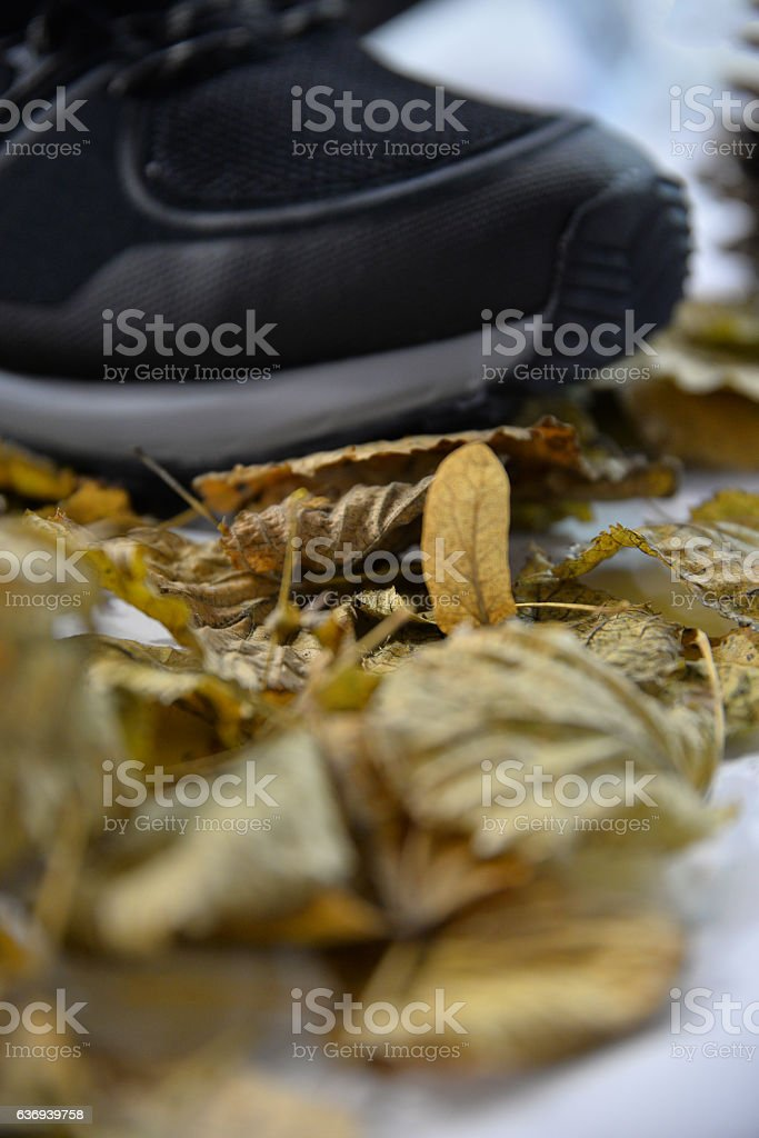Leather Winter Boot stock photo