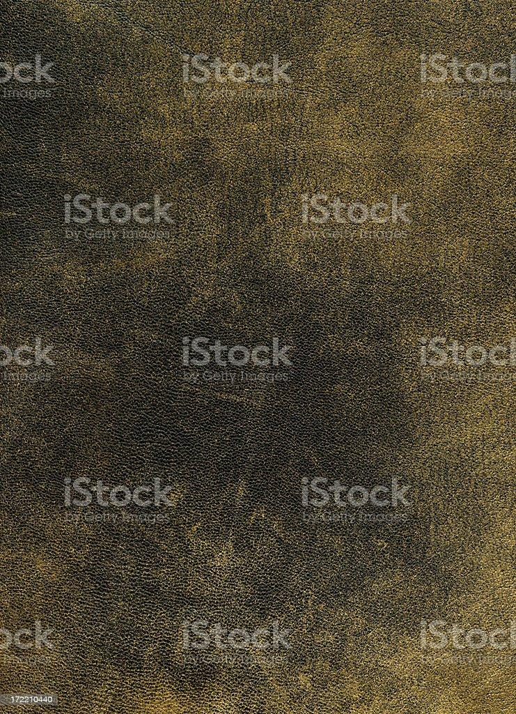 Leather XXL royalty-free stock photo