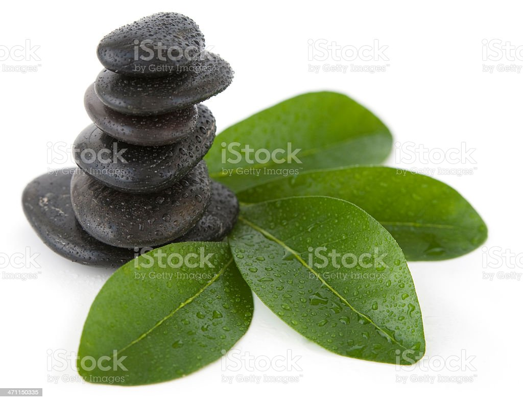 Leaves and pebbles isolated on white royalty-free stock photo