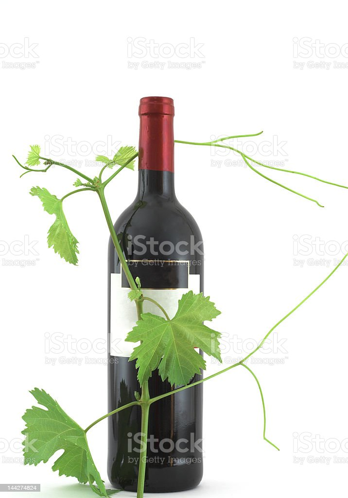 leaves around wine bottle stock photo