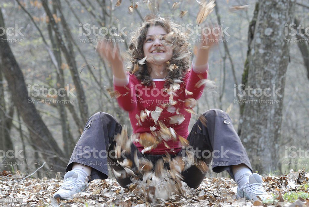 Leaves fall royalty-free stock photo