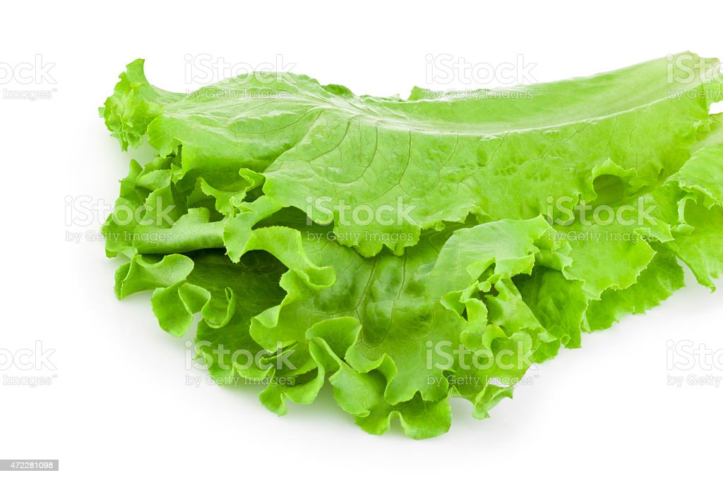 Leaves of green lettuce salad Isolated on white background stock photo