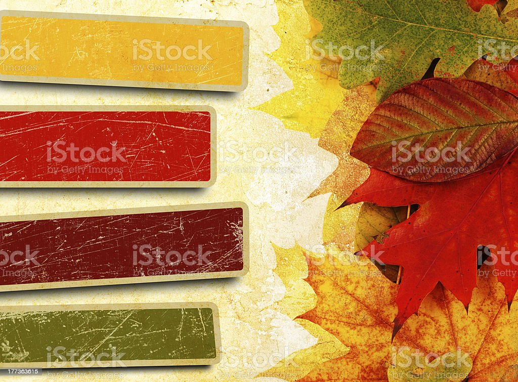 leaves on a grunge background royalty-free stock photo