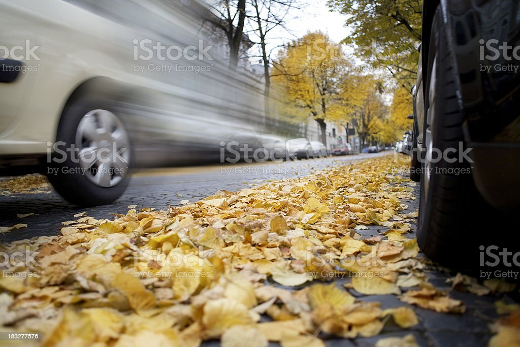 Leaves on street, car passing by royalty-free stock photo