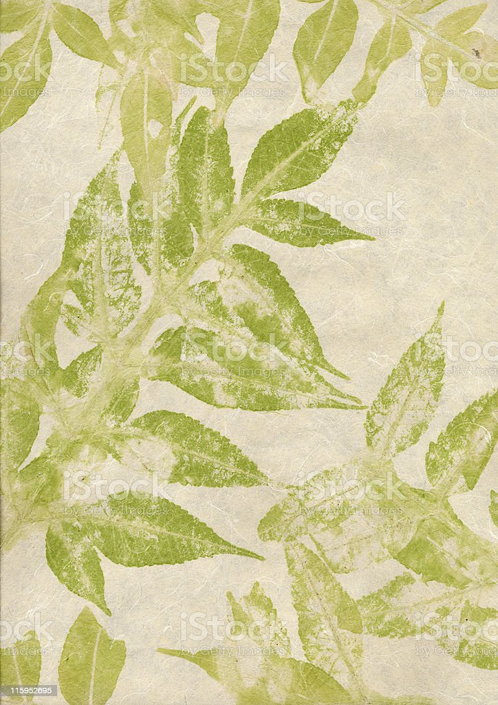 leaves paper stock photo