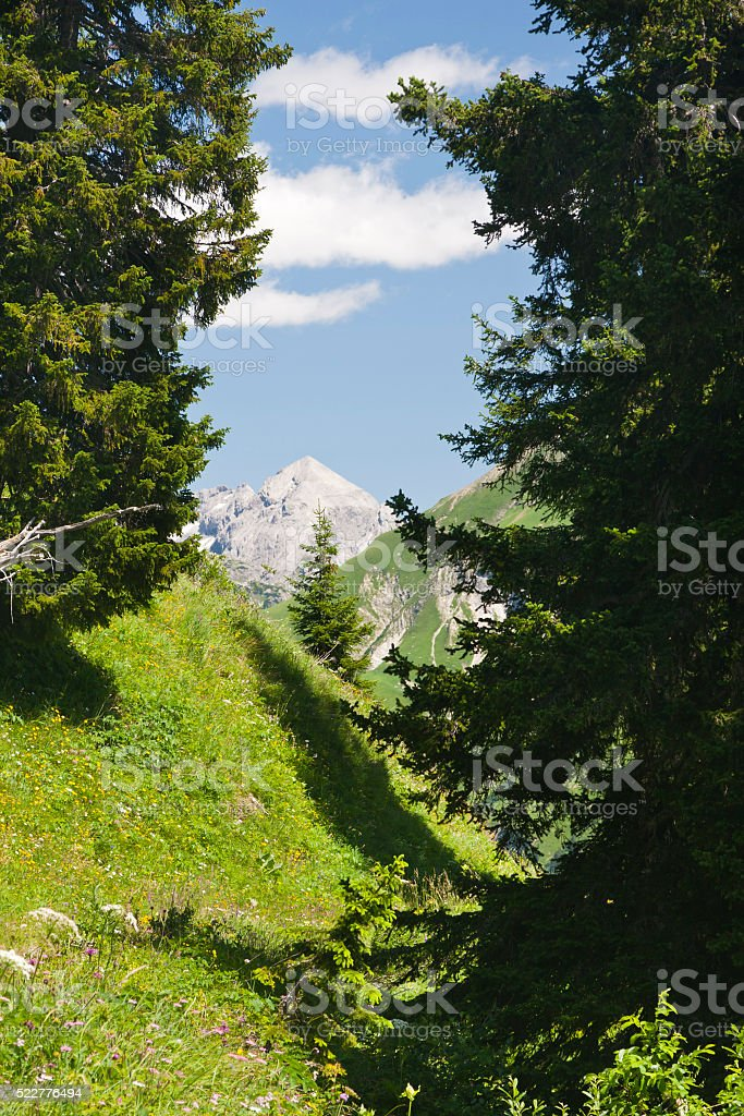 Lech Valley Alps, Austria stock photo
