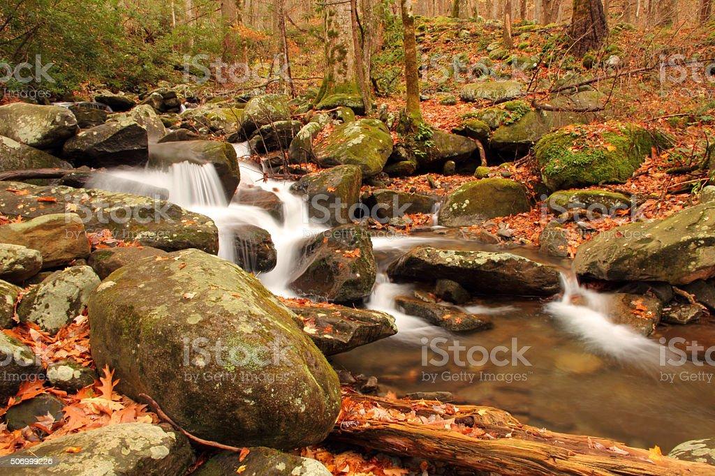 LeConte Creek stock photo