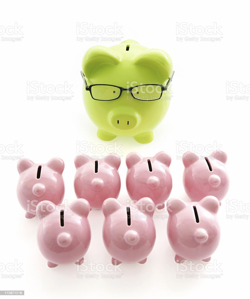 Lecturing on Finance royalty-free stock photo
