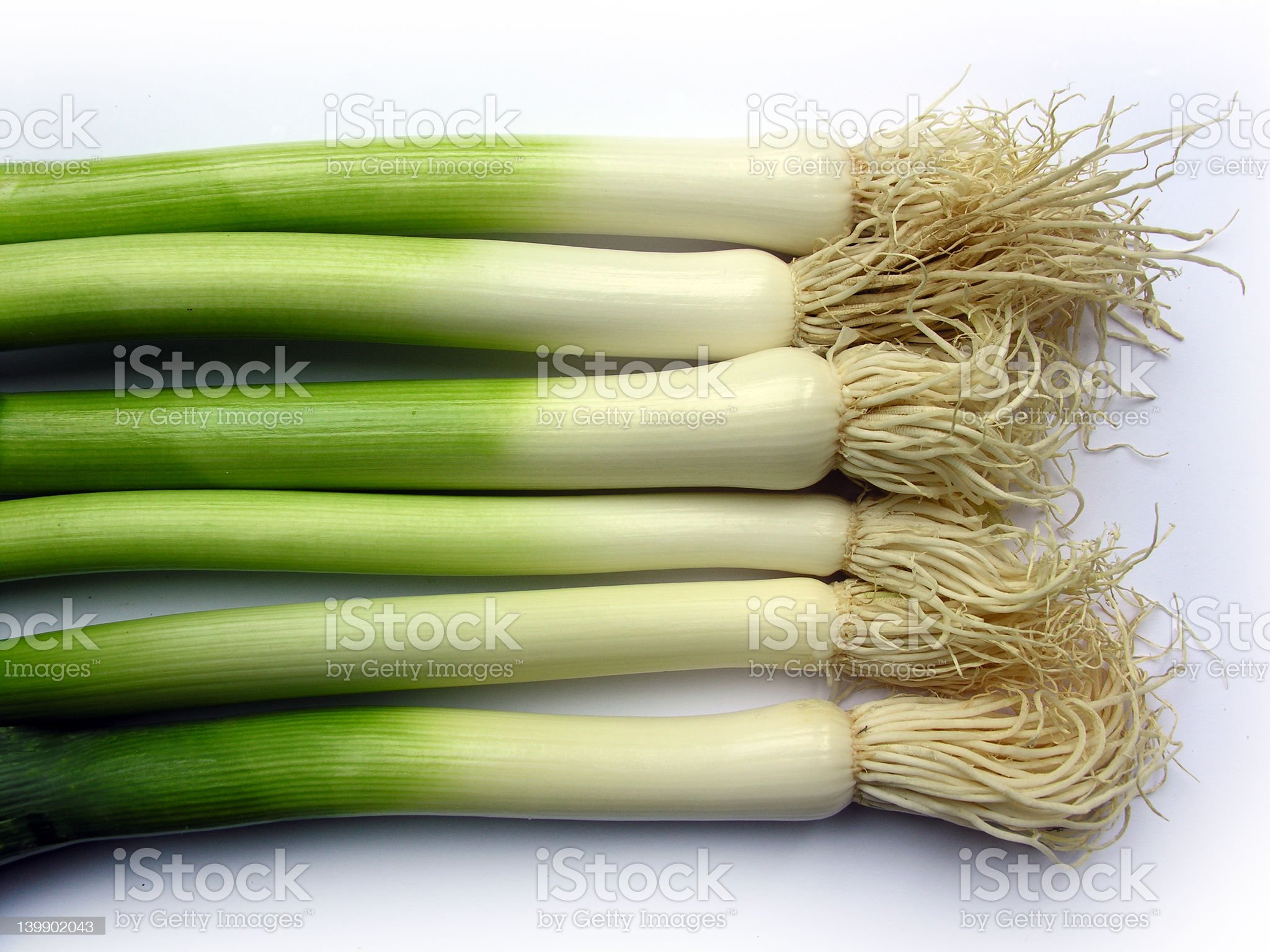 leeks in a row royalty-free stock photo