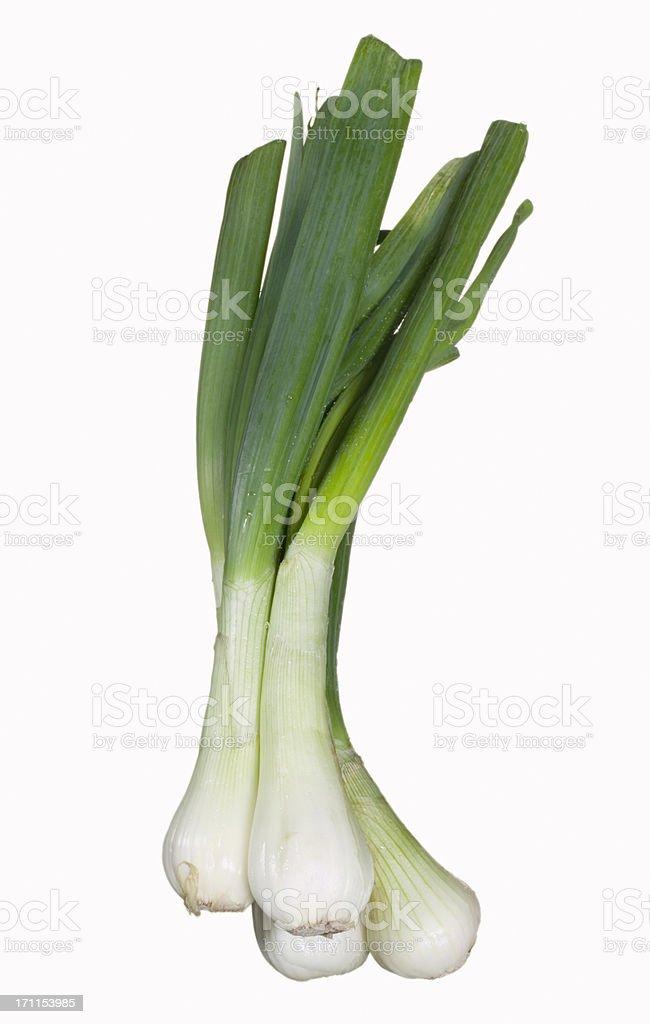 Leeks on white stock photo