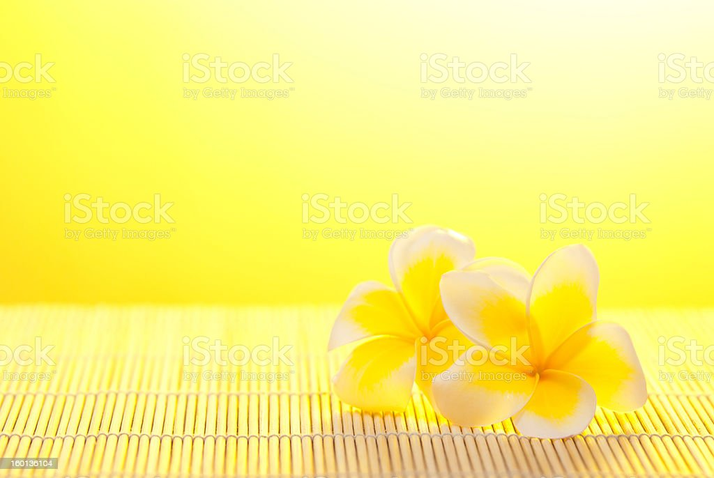 Leelawadee flower on bamboo background royalty-free stock photo
