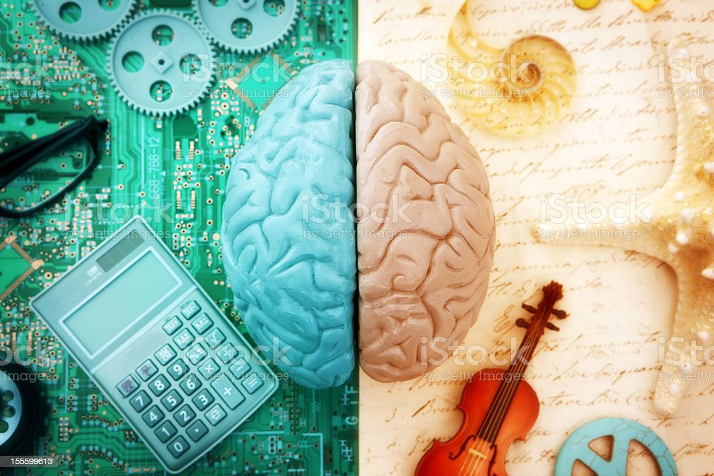 Left and Right Brain stock photo