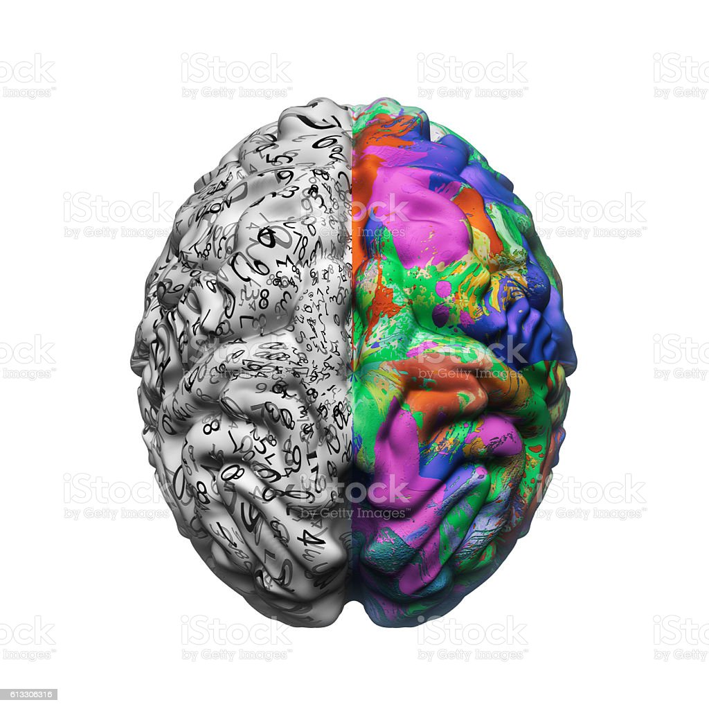 left and right sides of brain functions stock photo