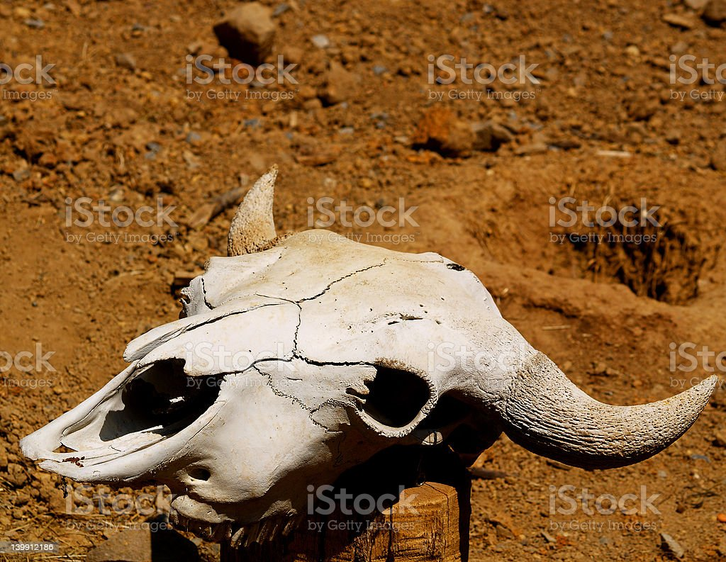 Left Behind royalty-free stock photo