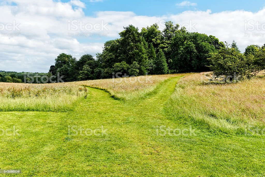 Left path or right path? stock photo