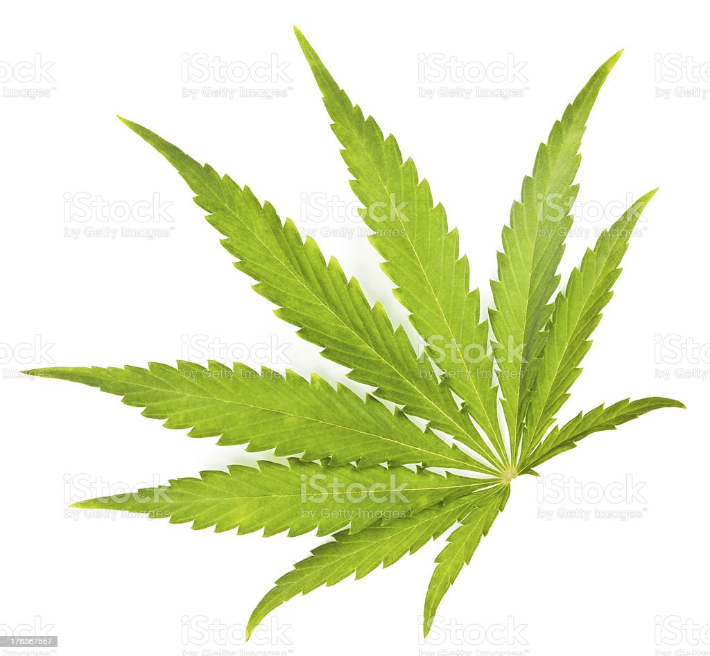 Legalize stock photo