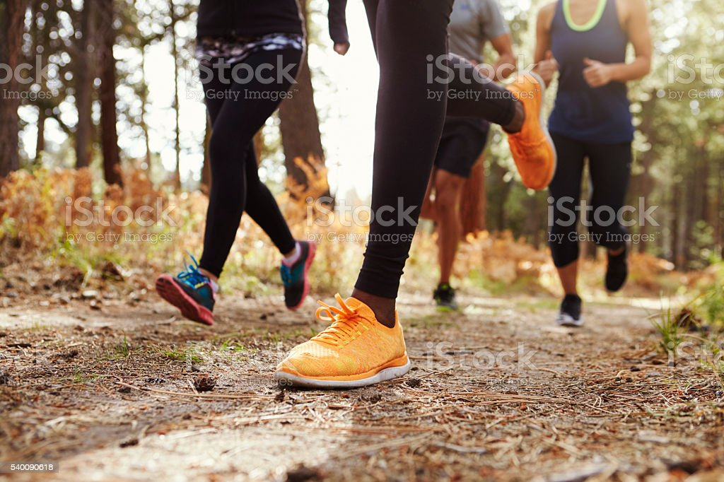 Legs and shoes of four young adults running in forest stock photo