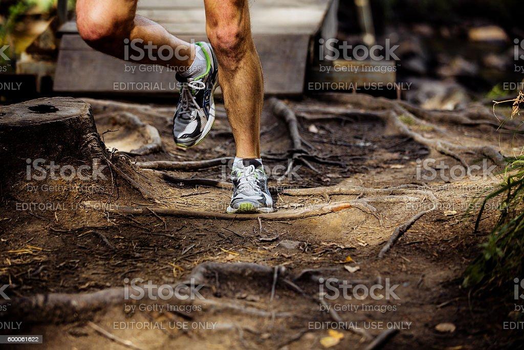 legs male marathon runner running in forest royalty-free 스톡 사진