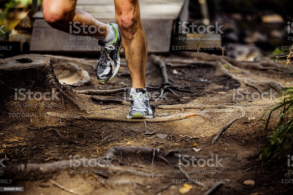 legs male marathon runner running in forest stock photo