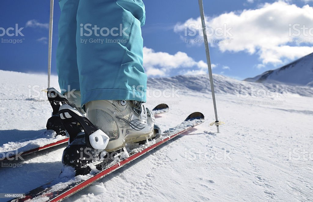 legs of alpine skier stock photo