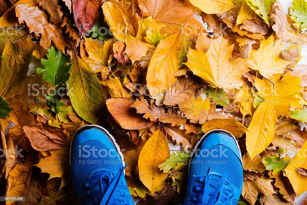 Legs of an unrecognizable runner. stock photo