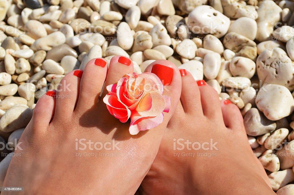 Legs on the beach stock photo