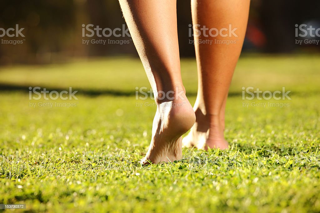Legs on the grass stock photo