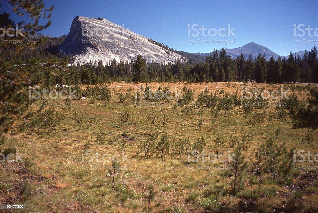 Lembert Dome glaciers Tuolumne Meadows Yosemite National Park California stock photo