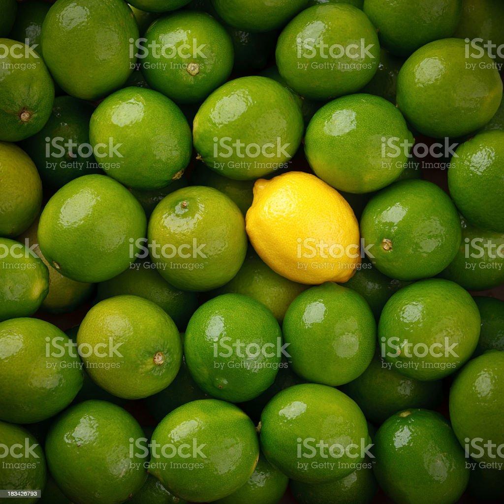 Lemon Amongst the Limes stock photo