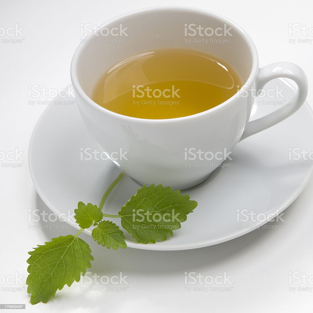 lemon balm tea stock photo