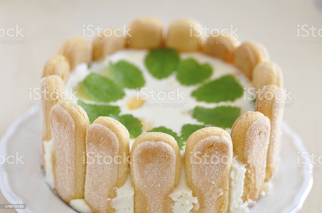 Lemon Cheesecake with Ladyfingers stock photo