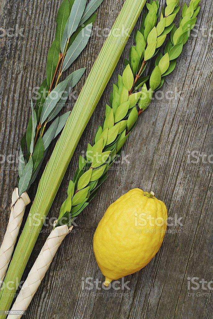 Lemon, leek and plants on a wooden table stock photo