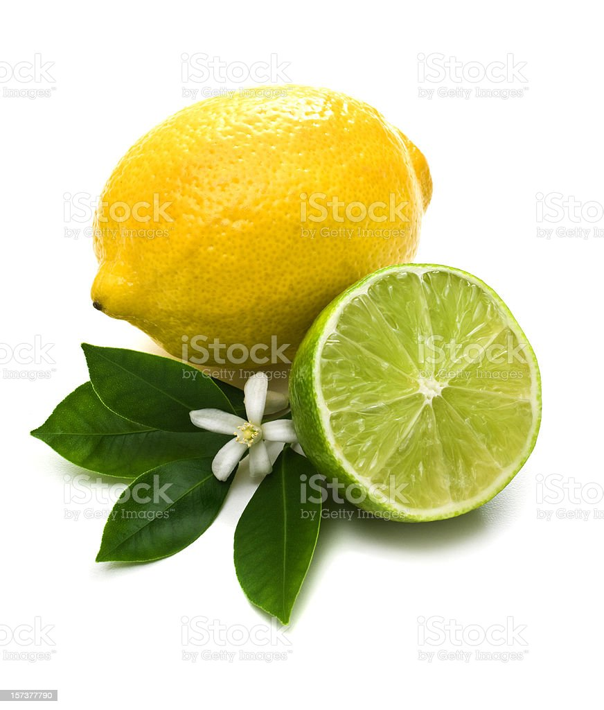 Lemon, lime and green leaves against white background stock photo