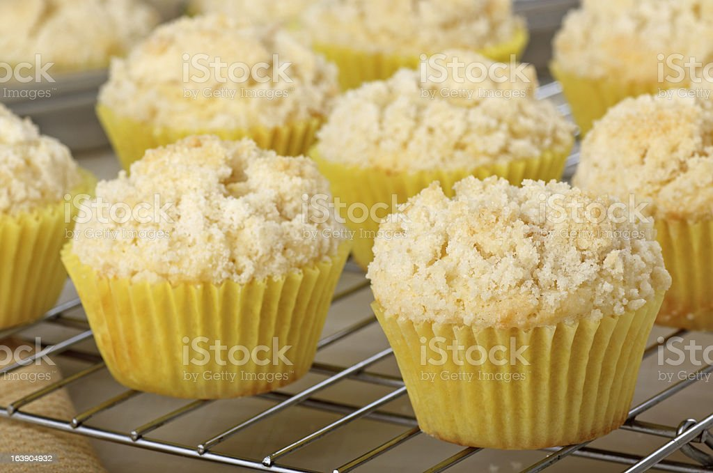 Lemon Muffins Cooling stock photo