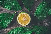 Lemon on wooden background