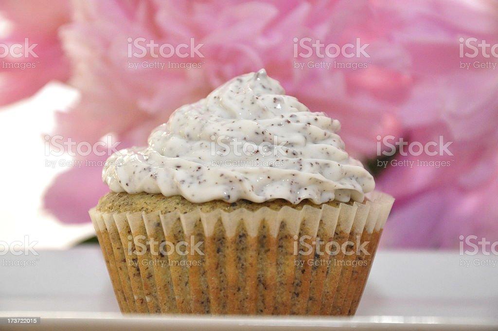 Lemon Poppy Seed Cupcake stock photo